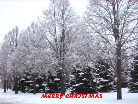 Merrychristmas_2
